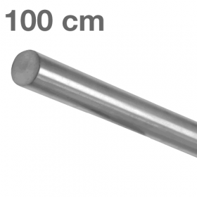RVS Geborsteld Trapleuning 100 cm